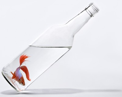 Fishbottle
