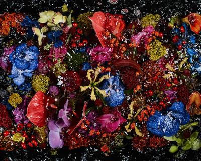 flower 1 copy