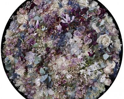 watercolour purplehaze