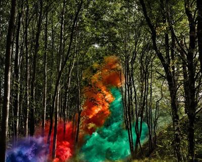 signalling nature 2