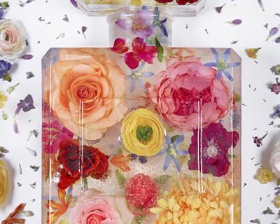 brand matters - eau de frozen flowers 3