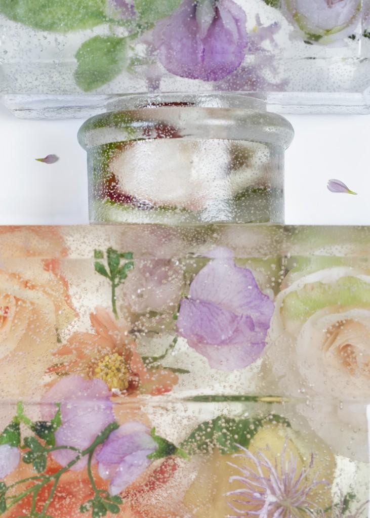 brand matters - eau de frozen flowers 4 close up4