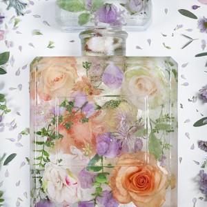 brand matters - eau de frozen flowers 4