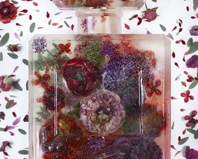 brand matters - eau de frozen flowers 5