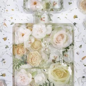 brand matters - eau de frozen flowers 6